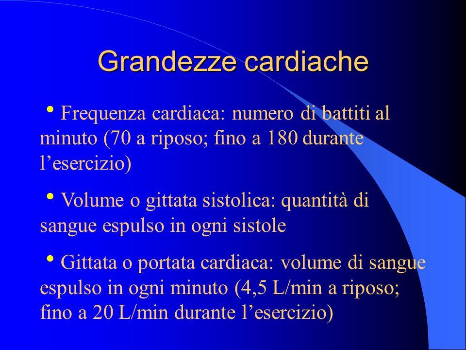 Grandezze cardiache Frequenza cardiaca: numero di battiti al minuto (70 a riposo; fino a 180 durante lesercizio) Volume o gittata sistolica: quantità