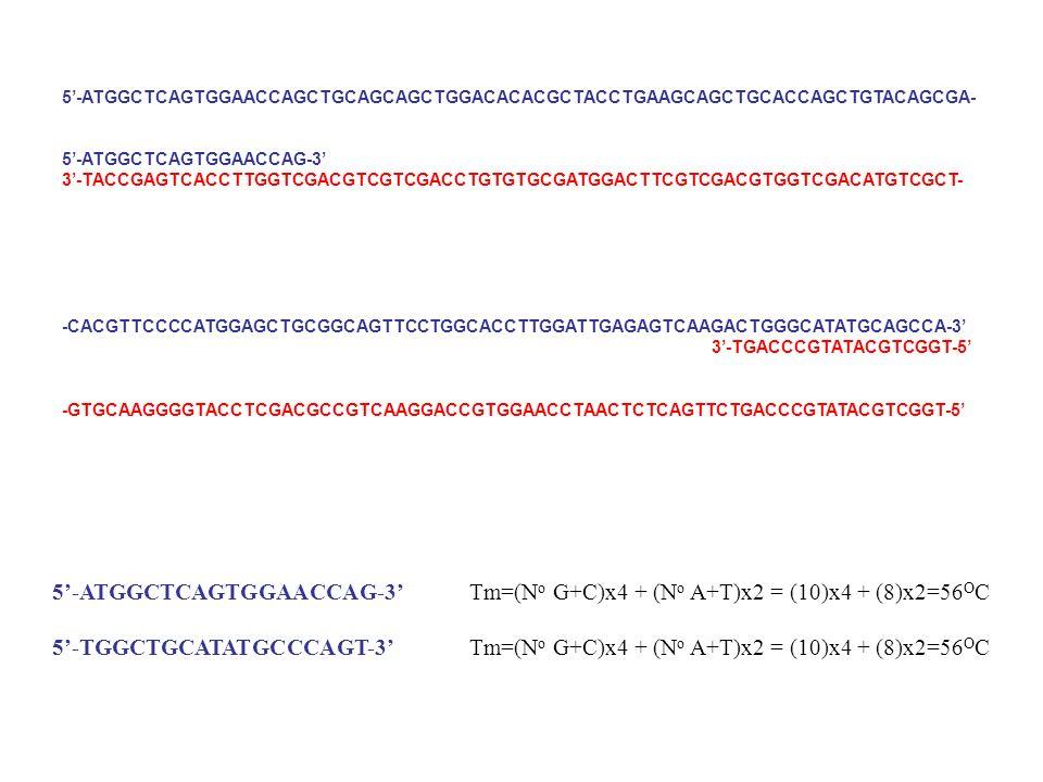 5-ATGGCTCAGTGGAACCAGCTGCAGCAGCTGGACACACGCTACCTGAAGCAGCTGCACCAGCTGTACAGCGA- 5-ATGGCTCAGTGGAACCAG-3 3-TACCGAGTCACCTTGGTCGACGTCGTCGACCTGTGTGCGATGGACTTCGT