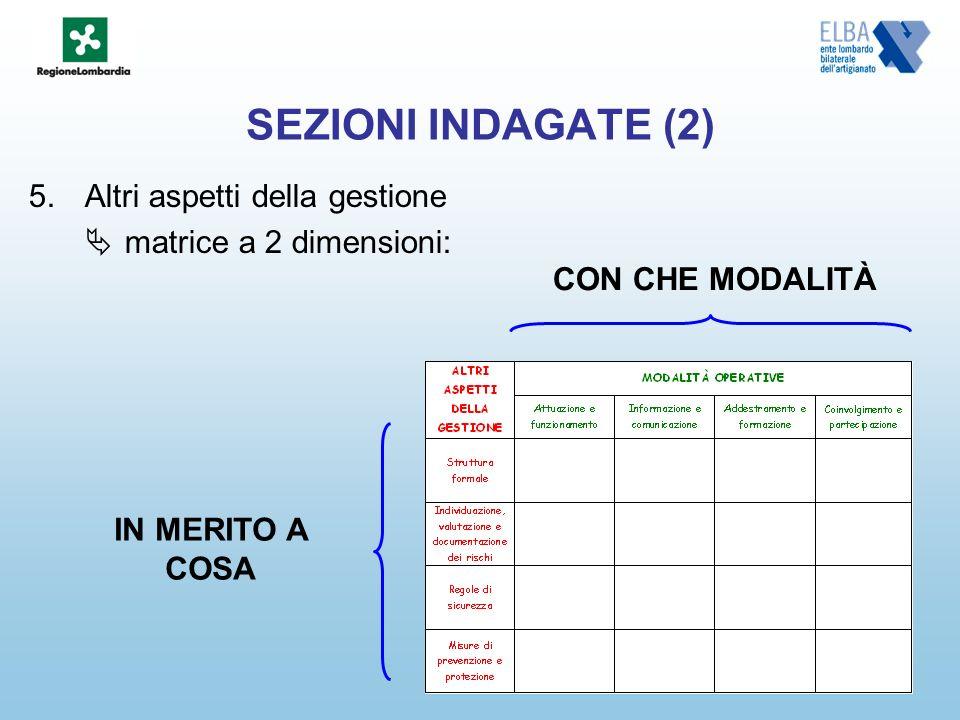 SEZIONI INDAGATE (2) 5.Altri aspetti della gestione matrice a 2 dimensioni: IN MERITO A COSA CON CHE MODALITÀ