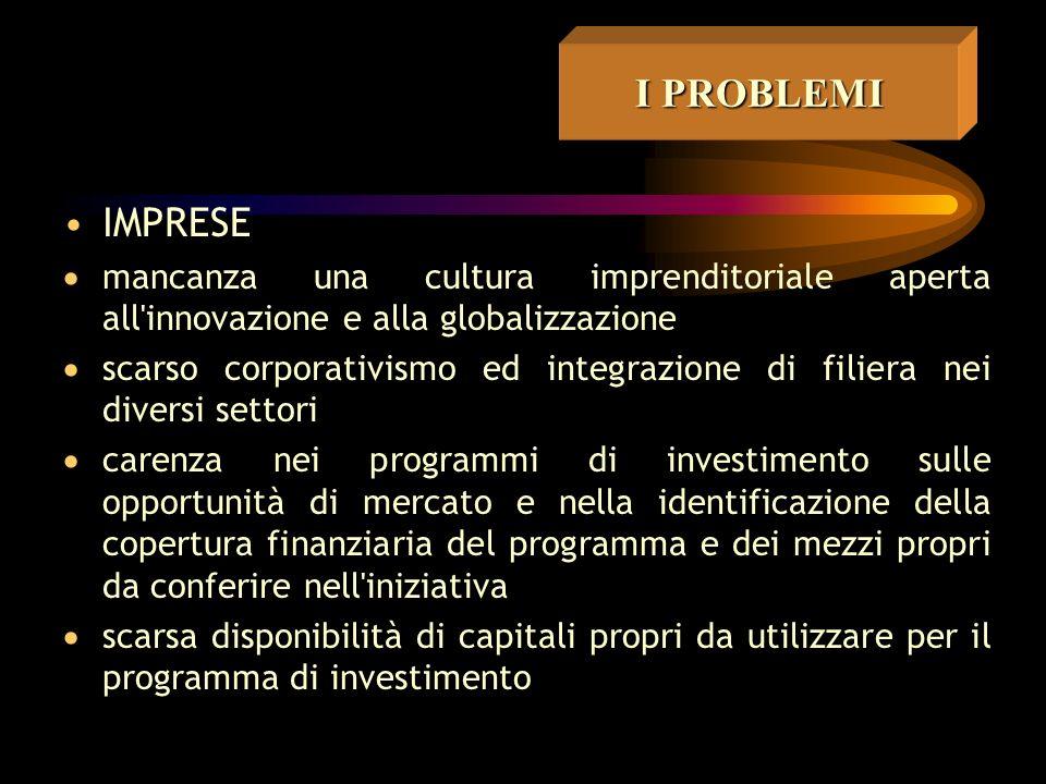 I REQUISITI unidea-forza presenza di imprenditorialità insieme integrato di progetti rapida eseguibilità e contenuta dimensione concertazione locale impegni ed obblighi dei sottoscrittori
