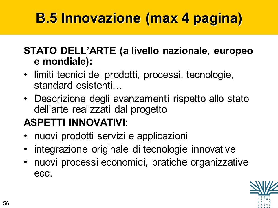 56 B.5 Innovazione (max 4 pagina) STATO DELLARTE (a livello nazionale, europeo e mondiale): limiti tecnici dei prodotti, processi, tecnologie, standar