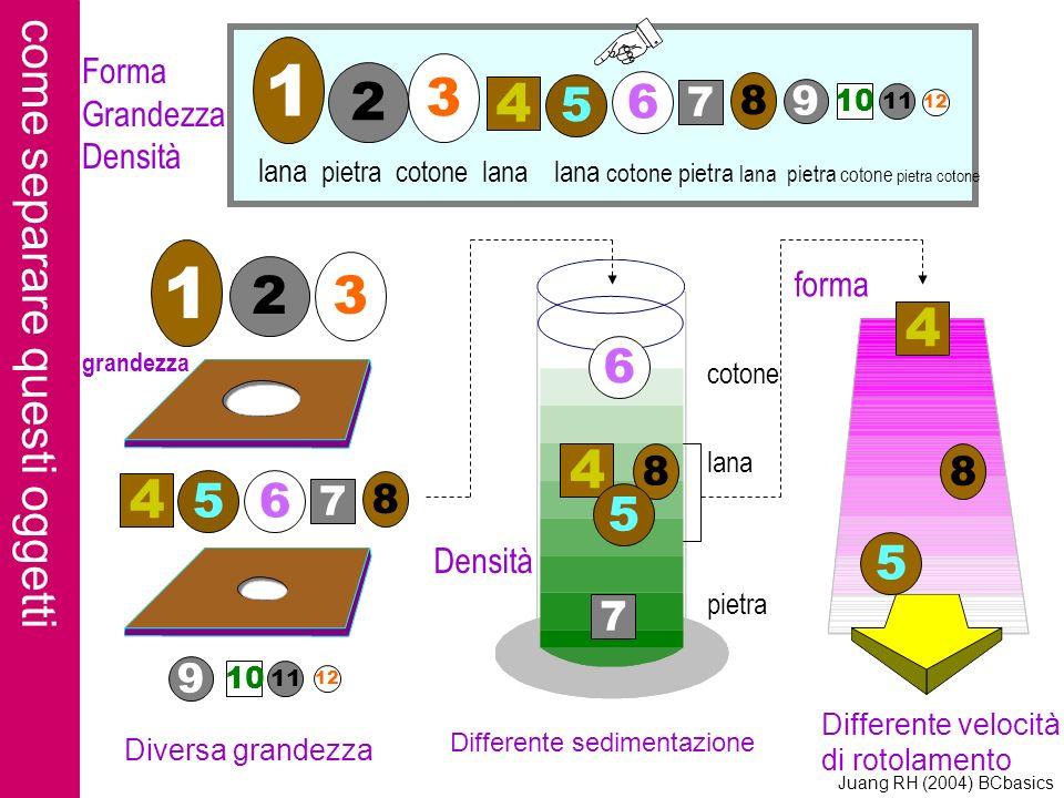 come separare questi oggetti 1 2 3 9 10 11 12 6 4 8 5 7 4 5 8 lana pietra cotone lana lana cotone pietra lana pietra cotone pietra cotone cotone lana