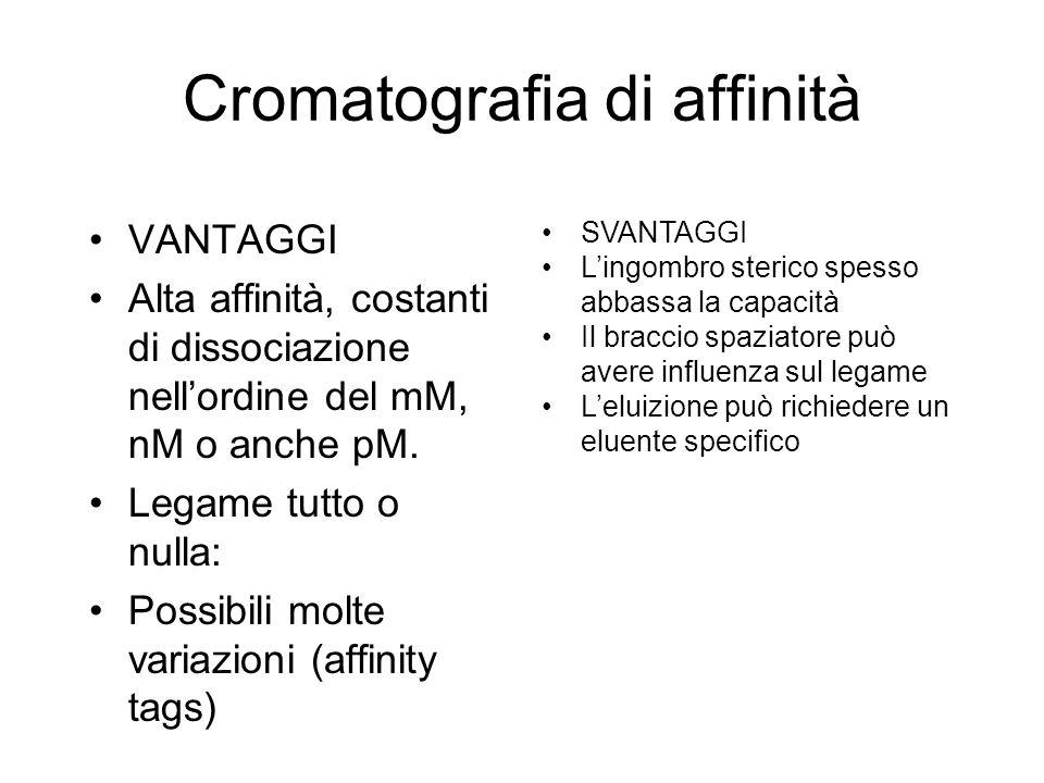 Cromatografia di affinità VANTAGGI Alta affinità, costanti di dissociazione nellordine del mM, nM o anche pM.