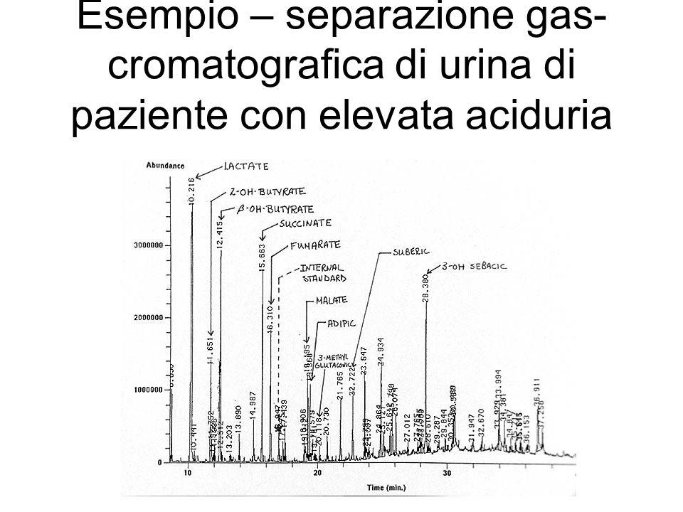 Esempio – separazione gas- cromatografica di urina di paziente con elevata aciduria