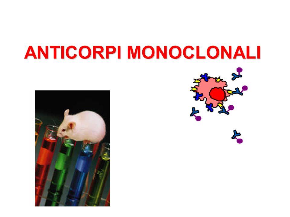Determinazione delle concentrazioni relative di anticorpi o di antigeni Confrontare diversi antigeni tra loro Stabilire la purezza di un preparato antigenico Impieghi dellimmunoprecipitazione