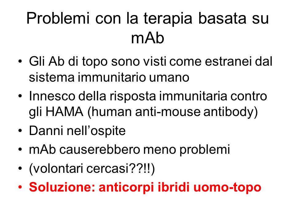 Problemi con la terapia basata su mAb Gli Ab di topo sono visti come estranei dal sistema immunitario umano Innesco della risposta immunitaria contro