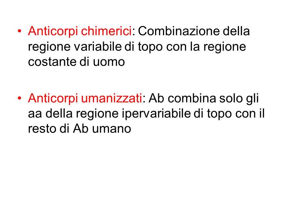 Anticorpi chimerici: Combinazione della regione variabile di topo con la regione costante di uomo Anticorpi umanizzati: Ab combina solo gli aa della r