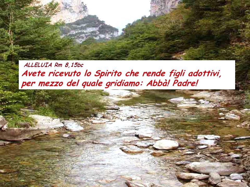 Col 2,12-14 Fratelli, con Cristo sepolti nel battesimo, con lui siete anche risorti mediante la fede nella potenza di Dio, che lo ha risuscitato dai m