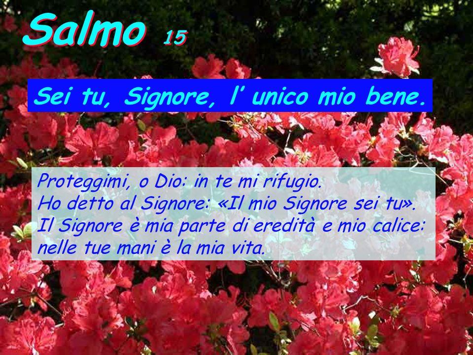 Salmo 15 Sei tu, Signore, l unico mio bene.Proteggimi, o Dio: in te mi rifugio.