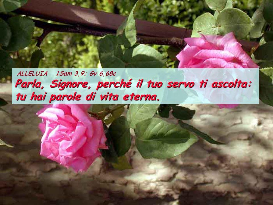ALLELUIA 1Sam 3,9; Gv 6,68c Parla, Signore, perché il tuo servo ti ascolta: tu hai parole di vita eterna.