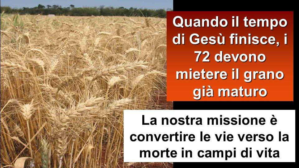 La nostra missione è convertire le vie verso la morte in campi di vita Quando il tempo di Gesù finisce, i 72 devono mietere il grano già maturo