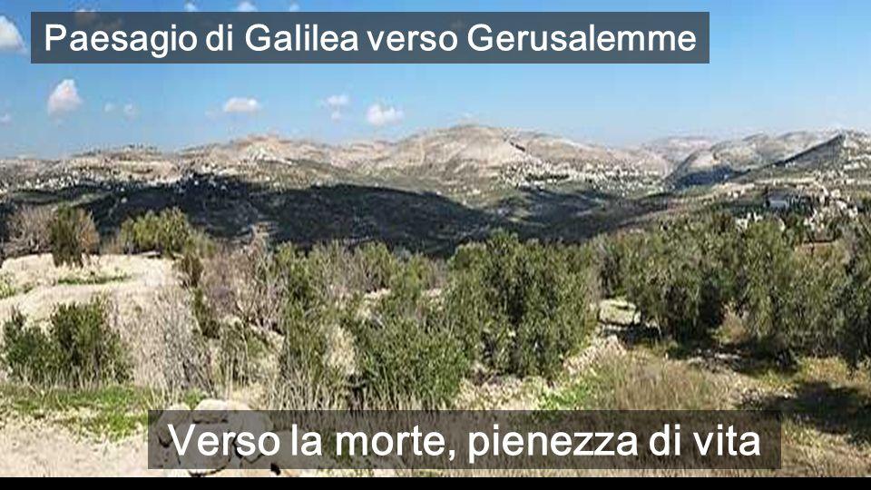 Paesagio di Galilea verso Gerusalemme Verso la morte, pienezza di vita