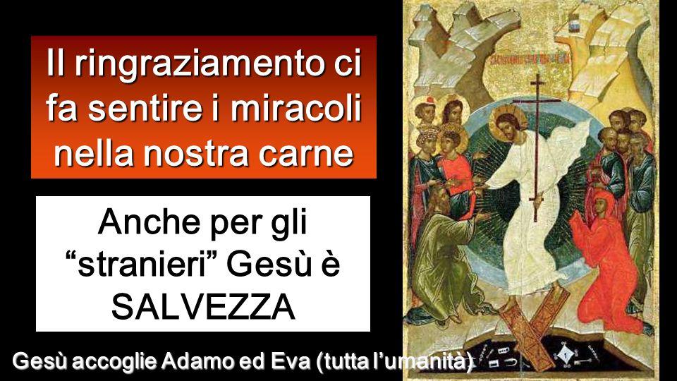 Uno di loro, vedendosi guarito, tornò indietro lodando Dio a gran voce, e si prostrò davanti a Gesù, ai suoi piedi, per ringraziarlo.