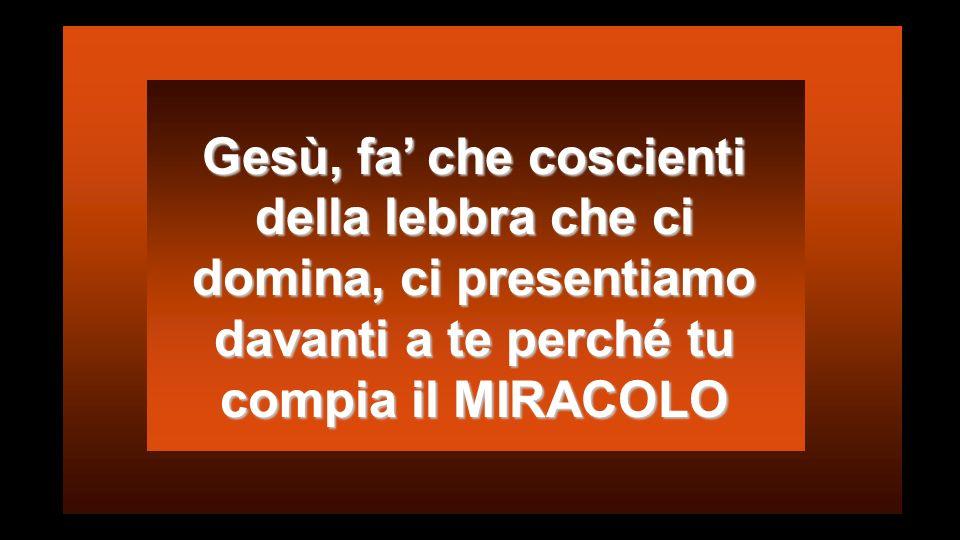 La FEDE ci porta nel Seno di Dio Credere è prova di ciò che non si vede (Eb 11,1) Martiri di Montserrat