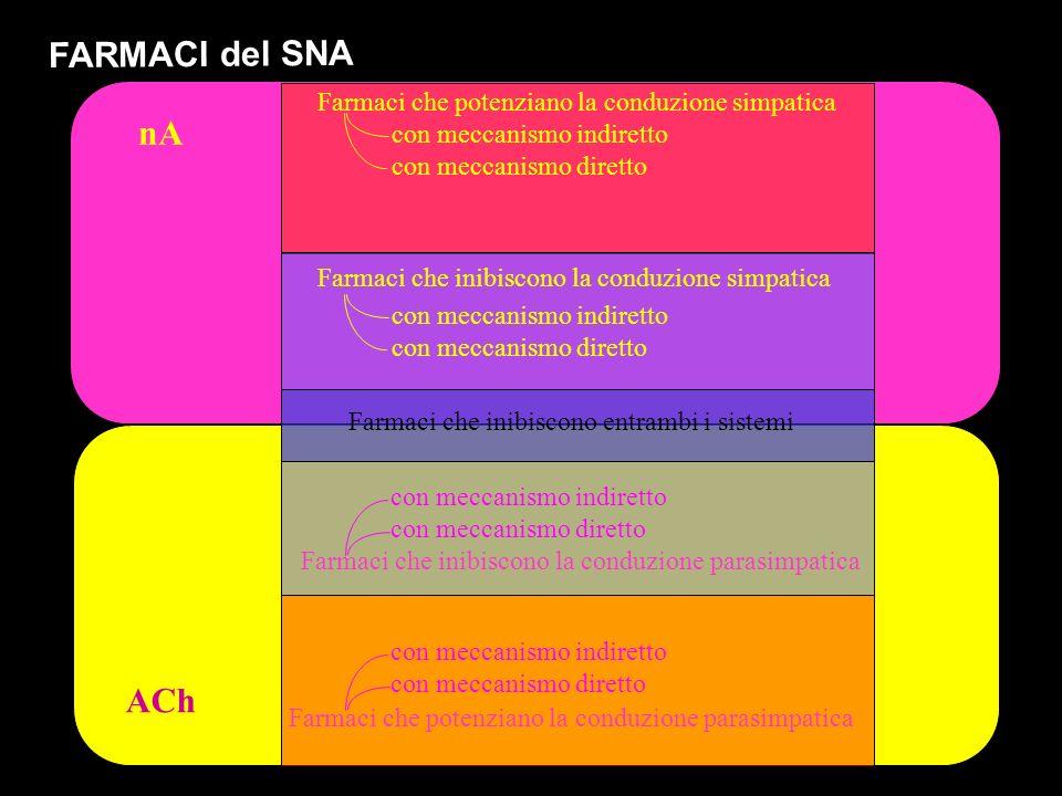 ACh nA FARMACI del SNA Farmaci che potenziano la conduzione simpatica Farmaci che inibiscono la conduzione simpatica Farmaci che inibiscono la conduzi