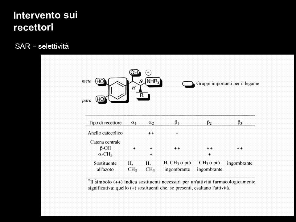 SAR selettività R S + Intervento sui recettori