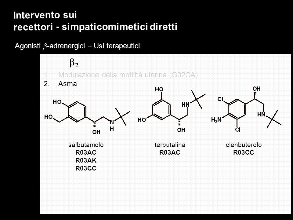 Agonisti -adrenergici Usi terapeutici Intervento sui recettori - simpaticomimetici diretti 1.Modulazione della motilità uterina (G02CA) 2.Asma salbuta