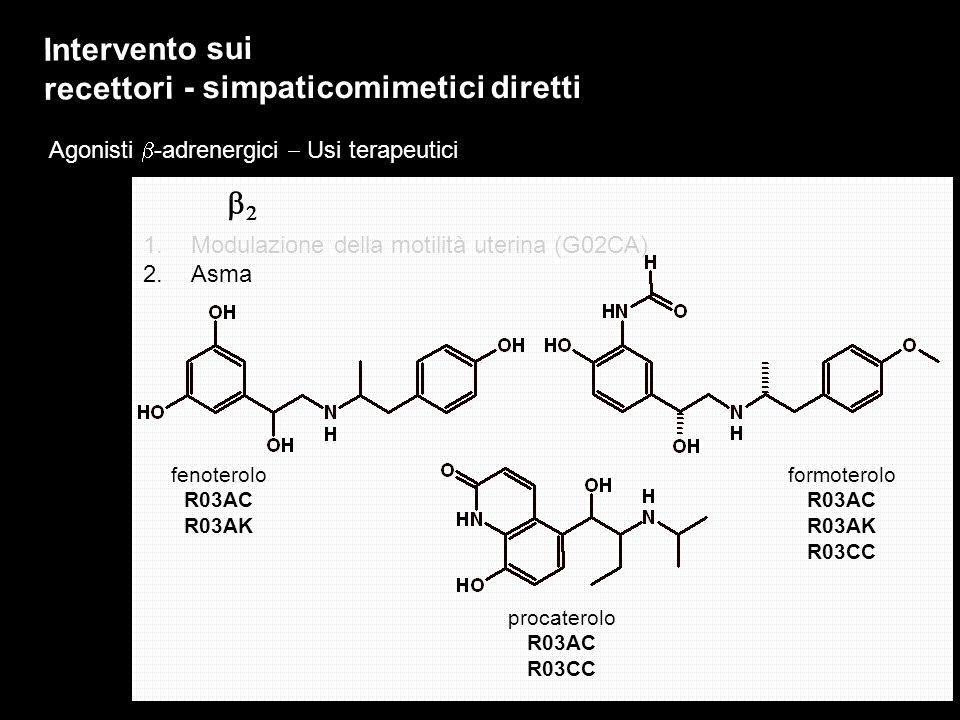 Agonisti -adrenergici Usi terapeutici Intervento sui recettori - simpaticomimetici diretti 1.Modulazione della motilità uterina (G02CA) 2.Asma fenoter