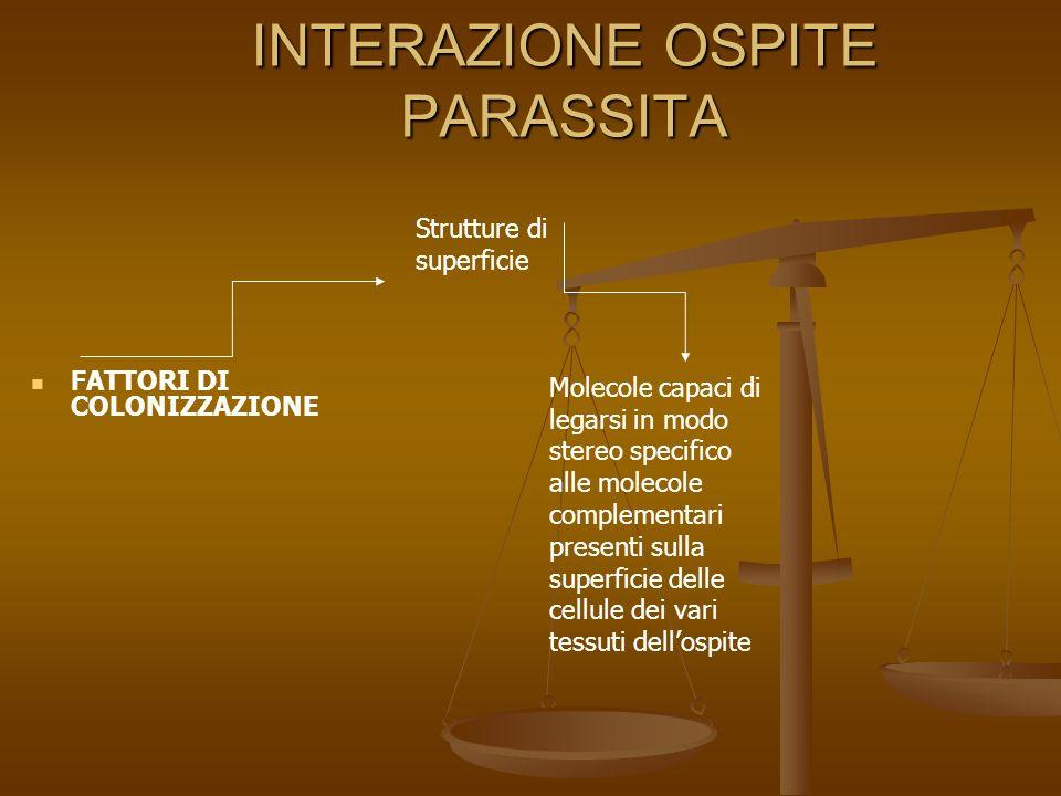 INTERAZIONE OSPITE PARASSITA Adesine Adesine CAPSULA STRUTTURE PILO SIMILI FIBRILLE, LANUGGINE SUP.