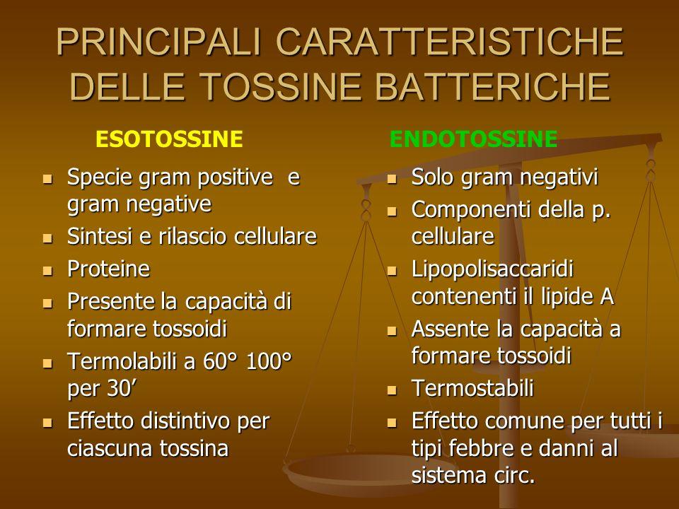 Esotossine batteriche Molecole prodotte dai batteri e rilasciate in ambiente extracellulare Molecole prodotte dai batteri e rilasciate in ambiente extracellulare Sono di natura proteica e termolabili Sono di natura proteica e termolabili Solubili in acqua Solubili in acqua Peso molecolare 20 – 300 KDa Peso molecolare 20 – 300 KDa La tossina stafilococcica resiste 2 ore a 100°C La tossina stafilococcica resiste 2 ore a 100°C