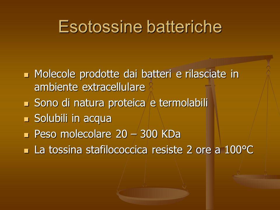 Esotossine batteriche Molecole prodotte dai batteri e rilasciate in ambiente extracellulare Molecole prodotte dai batteri e rilasciate in ambiente ext