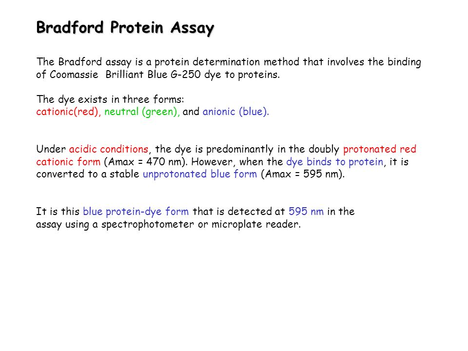 Bradford Protein Assay The Bradford assay is a protein determination method that involves the binding of Coomassie Brilliant Blue G-250 dye to protein