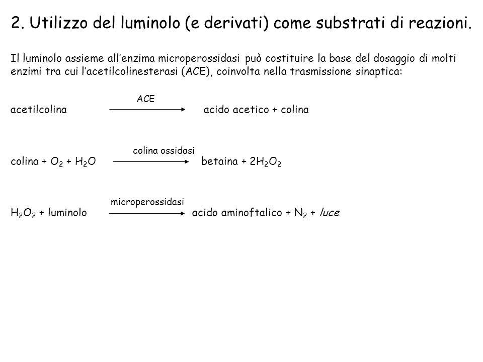 2.Utilizzo del luminolo (e derivati) come substrati di reazioni.