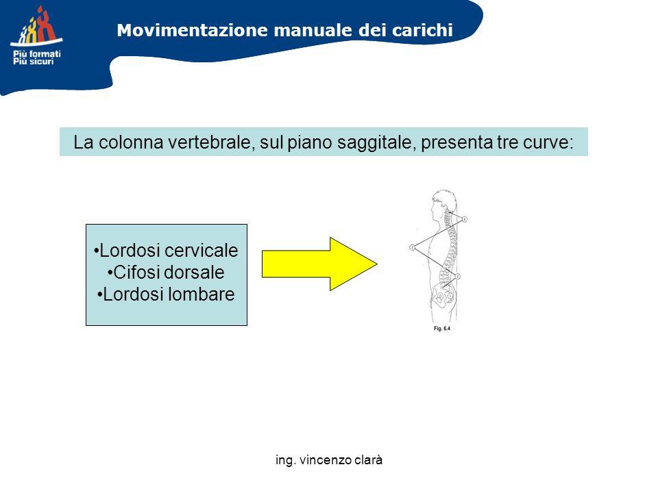 ing. vincenzo clarà Movimentazione manuale dei carichi Lordosi cervicale Cifosi dorsale Lordosi lombare La colonna vertebrale, sul piano saggitale, pr
