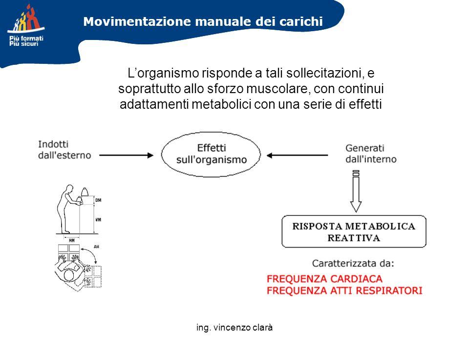 ing. vincenzo clarà Movimentazione manuale dei carichi Lorganismo risponde a tali sollecitazioni, e soprattutto allo sforzo muscolare, con continui ad