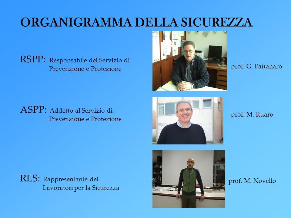 RSPP: Responsabile del Servizio di Prevenzione e Protezione prof. G. Pattanaro ASPP: Addetto al Servizio di Prevenzione e Protezione prof. M. Ruaro RL