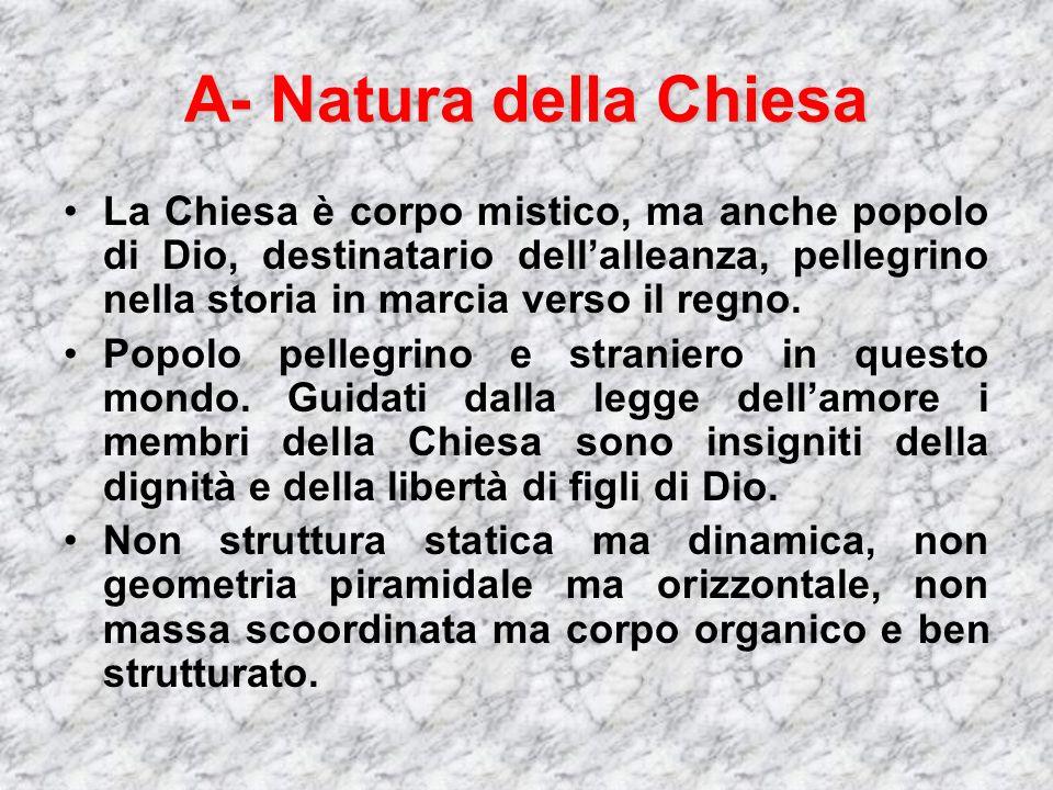 A- Natura della Chiesa La Chiesa è corpo mistico, ma anche popolo di Dio, destinatario dellalleanza, pellegrino nella storia in marcia verso il regno.