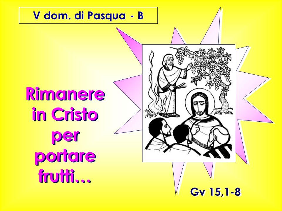 Gv 15,1-8 Rimanere in Cristo per portare frutti… V dom. di Pasqua - B