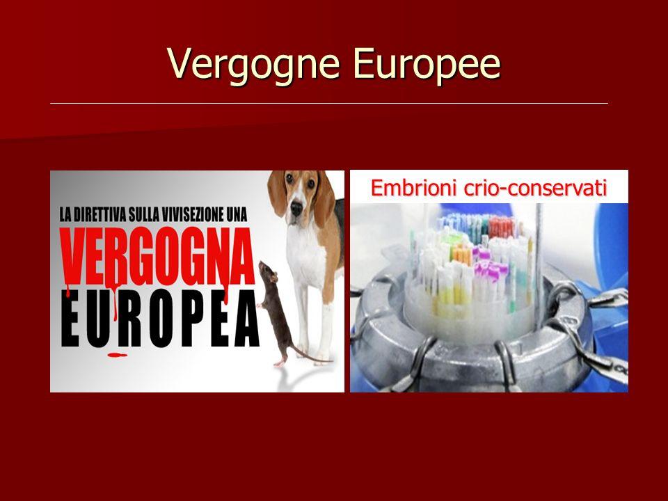 Vergogne Europee Embrioni crio-conservati