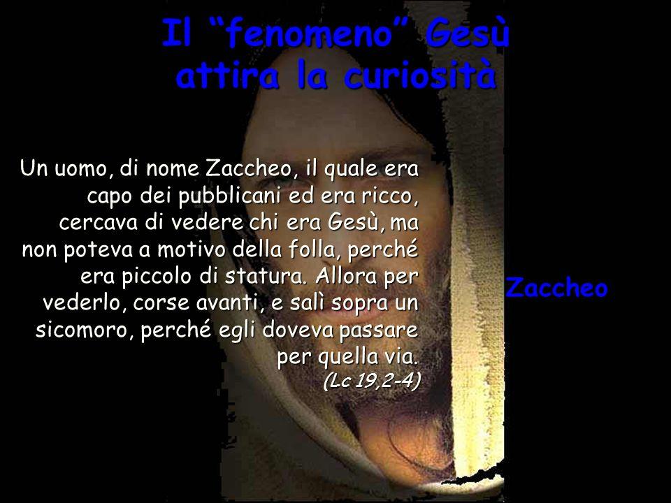 Il fenomeno Gesù attira la curiosità Un uomo, di nome Zaccheo, il quale era capo dei pubblicani ed era ricco, cercava di vedere chi era Gesù, ma non p