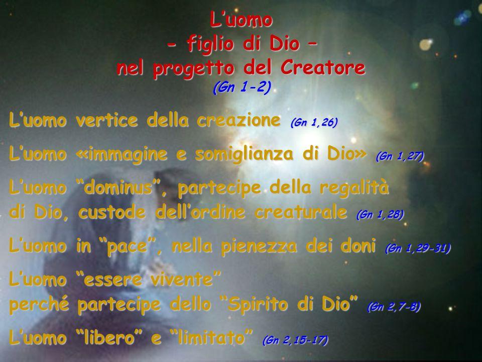 Luomo vertice della creazione (Gn 1,26) Luomo «immagine e somiglianza di Dio» (Gn 1,27) Luomo dominus, partecipe della regalità di Dio, custode dellor