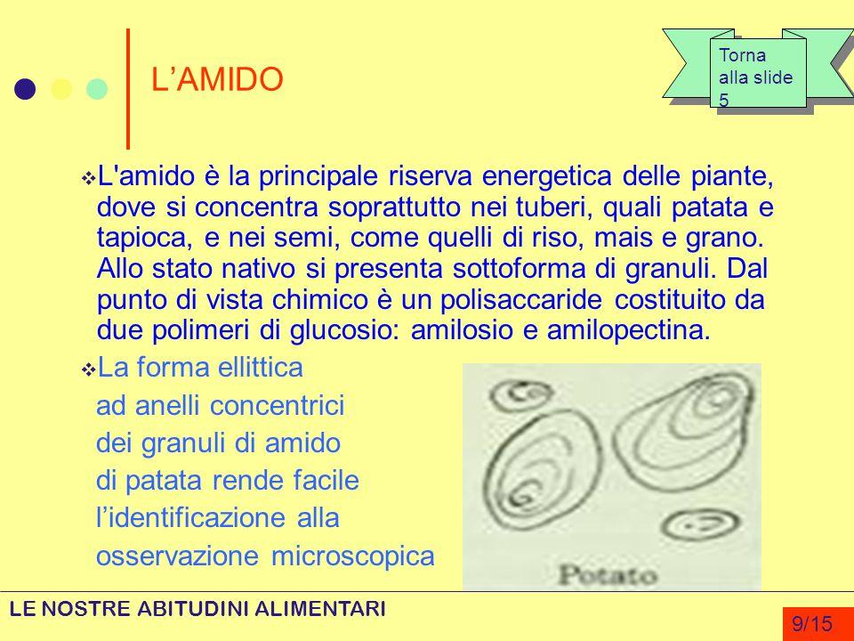 LAMIDO L'amido è la principale riserva energetica delle piante, dove si concentra soprattutto nei tuberi, quali patata e tapioca, e nei semi, come que