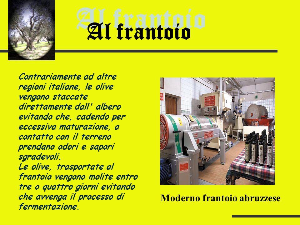 La quasi totalità dell olio ottenuto dalla spremitura delle olive prodotto in Abruzzo rientra nella categoria degli extravergini.