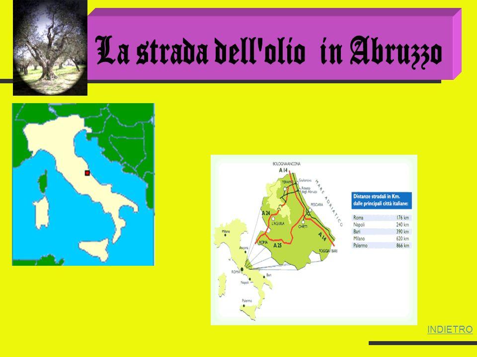 Dalle falde del Gran Sasso al mare e dai colli Chietini ai piedi della Maiella, grandi oliveti coprono il continuo succedersi di valli e colline spingendosi fino a 500 metri di altitudine.