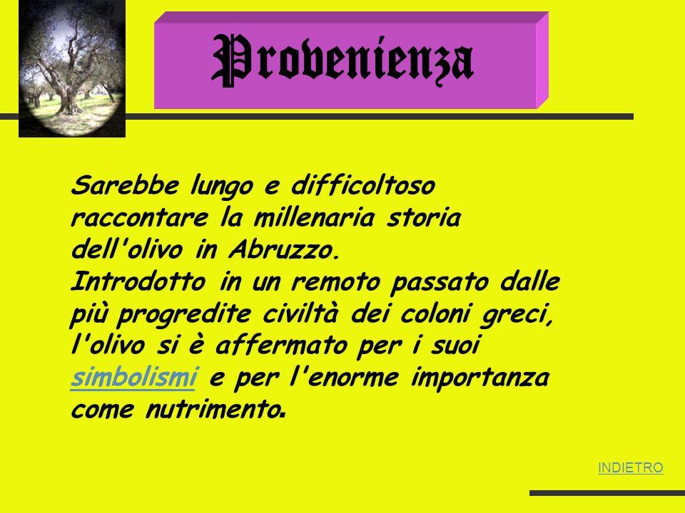 Se a partire dalle regioni piu meridionali in Italia la coltivazione dell olivo si sviluppa nel IV-III sec.