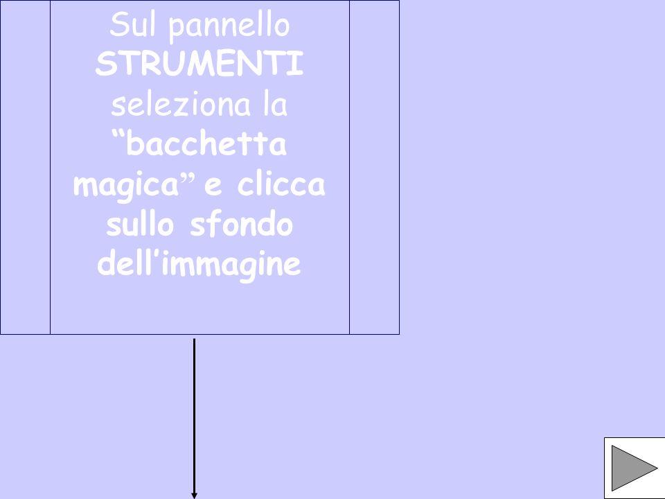 Sul pannello STRUMENTI seleziona la bacchetta magica e clicca sullo sfondo dellimmagine