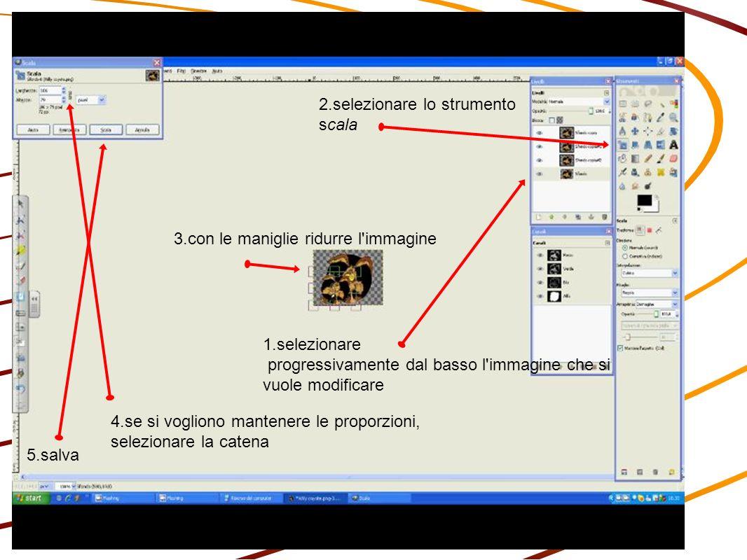 1.selezionare progressivamente dal basso l immagine che si vuole modificare 2.selezionare lo strumento scala 3.con le maniglie ridurre l immagine 4.se si vogliono mantenere le proporzioni, selezionare la catena 5.salva