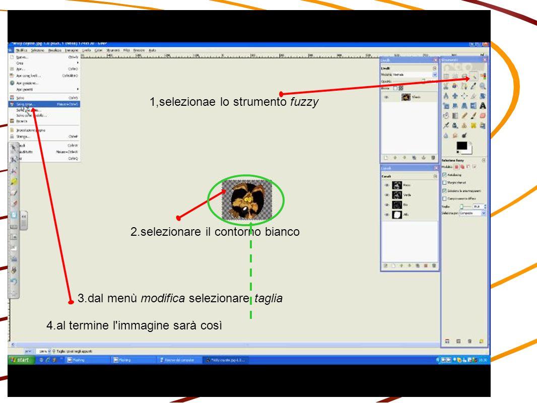 1,selezionae lo strumento fuzzy 2.selezionare il contorno bianco 3.dal menù modifica selezionare taglia 4.al termine l immagine sarà così