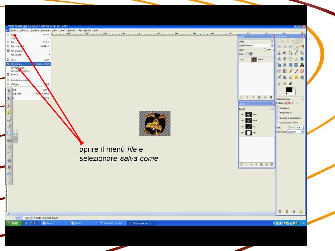 apparirà questa finestra: cambiare l estensione del file da jpeg a PNG; premere invio