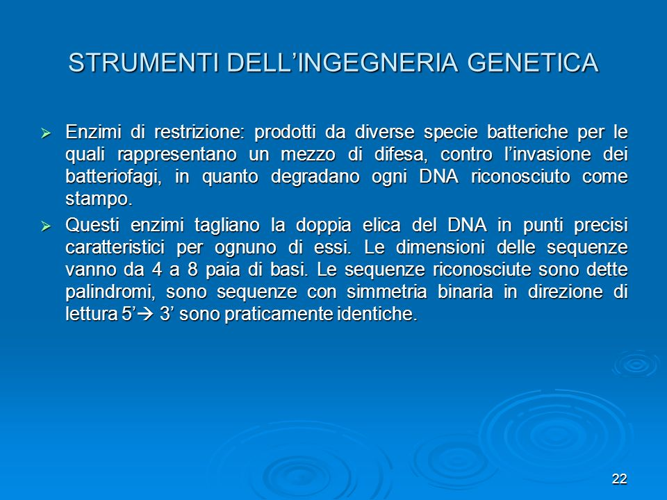 22 STRUMENTI DELLINGEGNERIA GENETICA Enzimi di restrizione: prodotti da diverse specie batteriche per le quali rappresentano un mezzo di difesa, contr