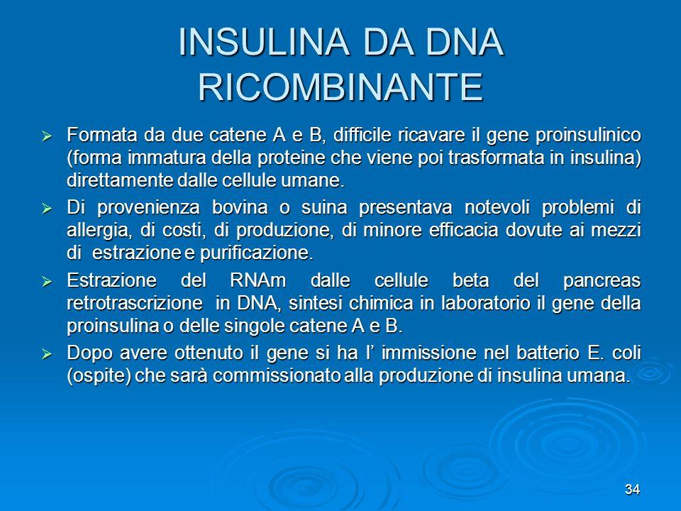 34 INSULINA DA DNA RICOMBINANTE Formata da due catene A e B, difficile ricavare il gene proinsulinico (forma immatura della proteine che viene poi tra