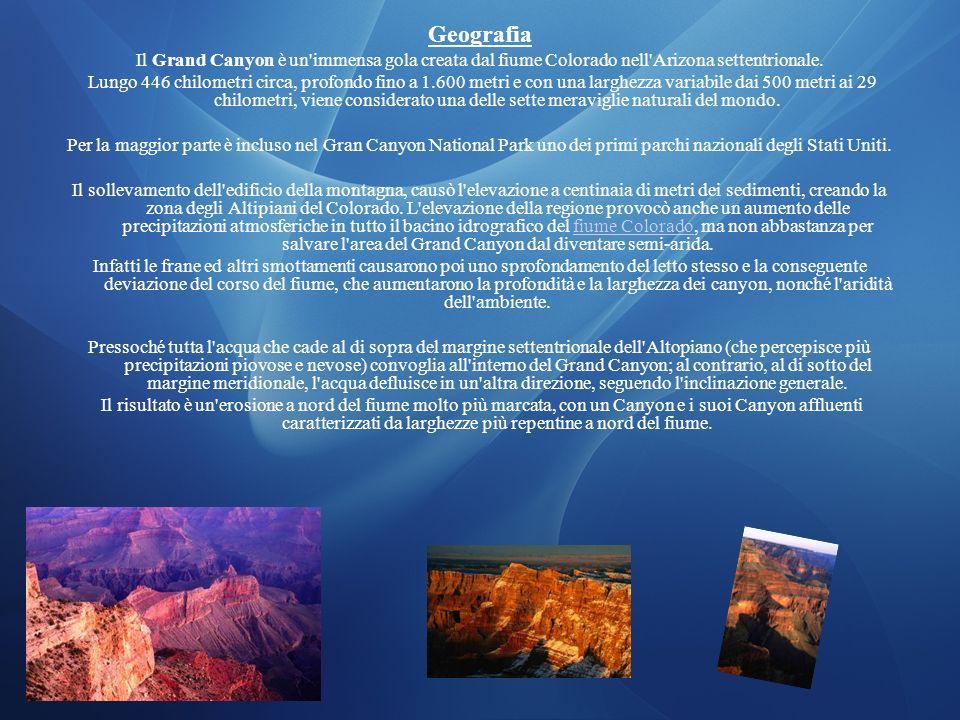 Geografia Il Grand Canyon è un'immensa gola creata dal fiume Colorado nell'Arizona settentrionale. Lungo 446 chilometri circa, profondo fino a 1.600 m
