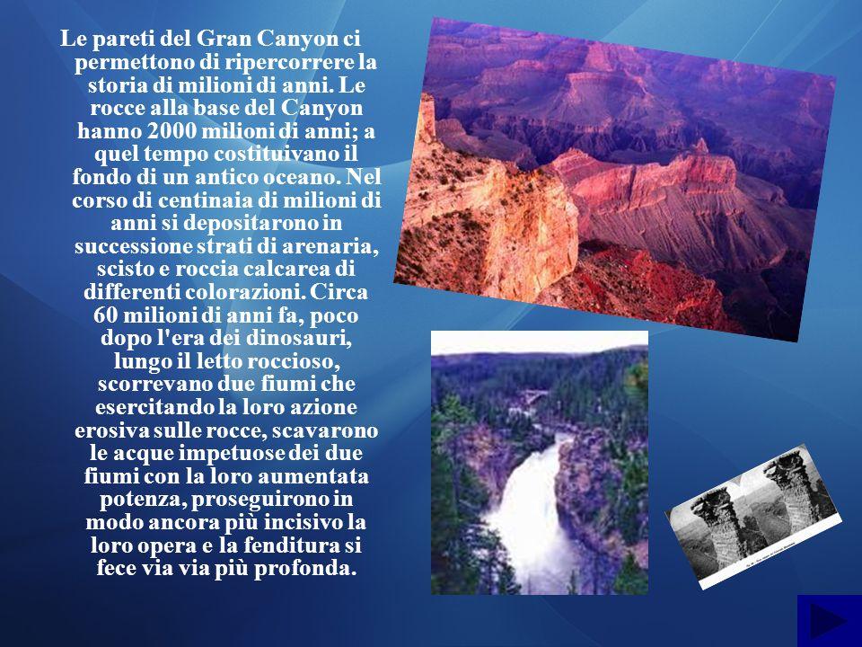Le pareti del Gran Canyon ci permettono di ripercorrere la storia di milioni di anni. Le rocce alla base del Canyon hanno 2000 milioni di anni; a quel