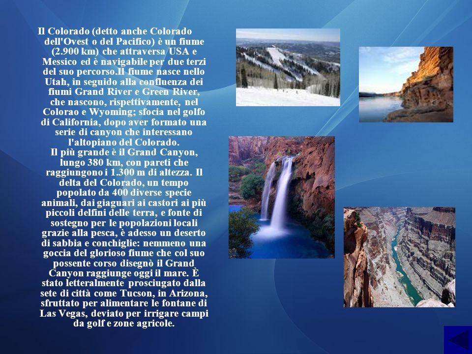 Il Colorado (detto anche Colorado dell'Ovest o del Pacifico) è un fiume (2.900 km) che attraversa USA e Messico ed è navigabile per due terzi del suo