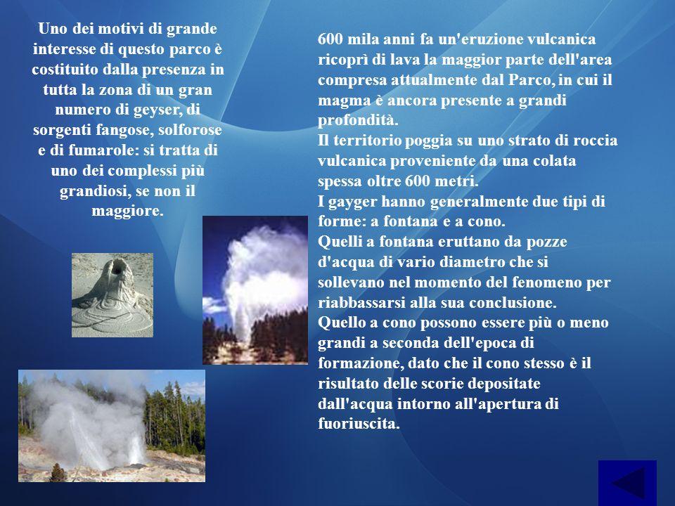 Uno dei motivi di grande interesse di questo parco è costituito dalla presenza in tutta la zona di un gran numero di geyser, di sorgenti fangose, solf