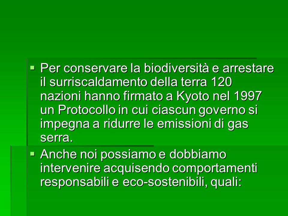Per conservare la biodiversità e arrestare il surriscaldamento della terra 120 nazioni hanno firmato a Kyoto nel 1997 un Protocollo in cui ciascun gov